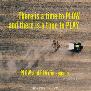 Plow or play?